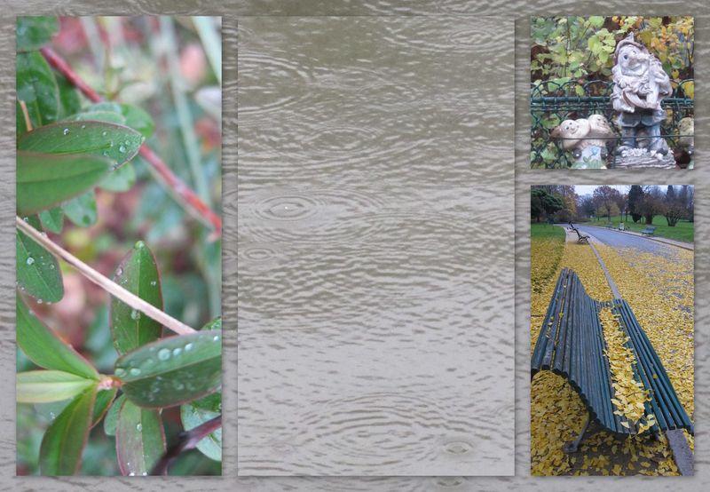 cliquer sur le montage pour agrandir — de gauche à droite et de haut en bas : 1/ feuillage mouillé, utilisation de la fonction macro — 2/ ronds dans l'eau sur l'étang — 3/ enfance, le nain porte quoi ?  — 4/ feuilles jaunes assises sur le banc vert et perspective