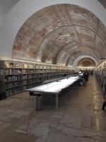 la bibliothèque de recherche de la Cité de l'Architecture (Trocadéro) — photo (c) tilly